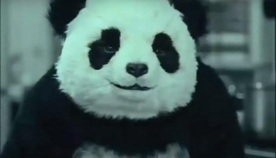 Será mejor que nunca le digas no al panda